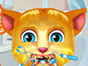 Talking Ginger, the cute cat, is here in this kitty dentist game and you will be playing as the doctor. Make sure you will make its smile a really cute one as all the kids love it.